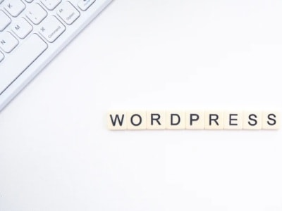 15 reasons that we use WordPress to design websites for our clients